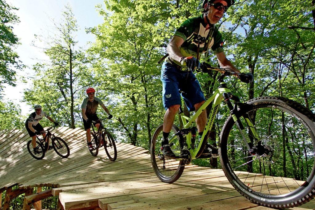 Three bikers on a mountain bike trail