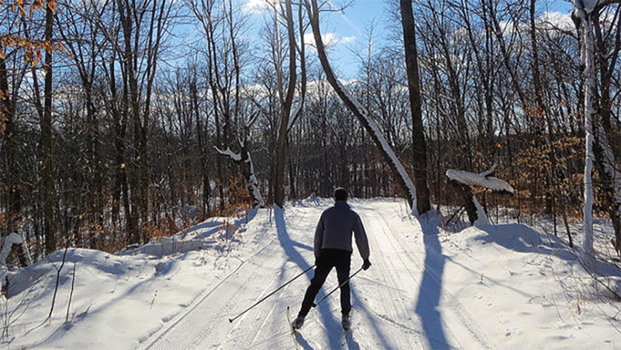 person cross country skiing on trails during winter